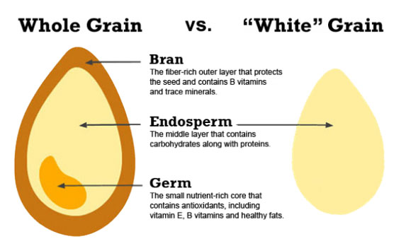 Anatomy of the Grain